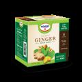 Kendel _instant ginger tea(ginger with mint)